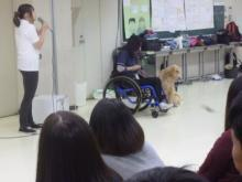 介助犬を学びました